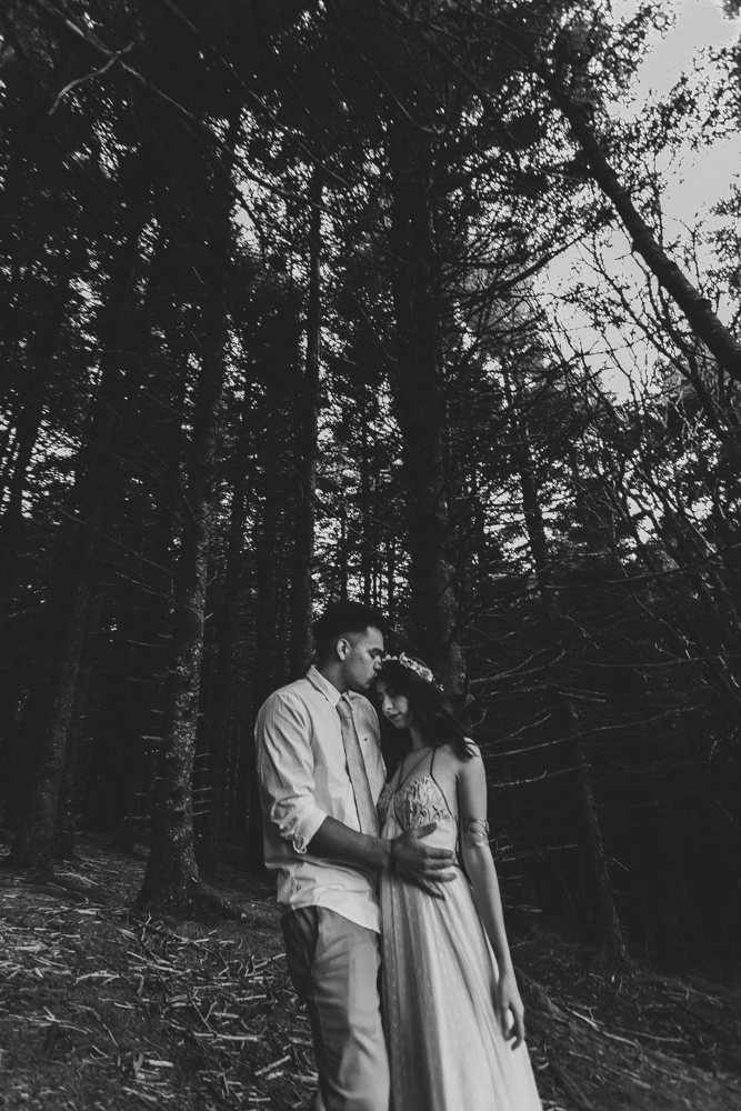 asheville north carolina wedding and portrait photographers #28 | Love Is Wild Photography